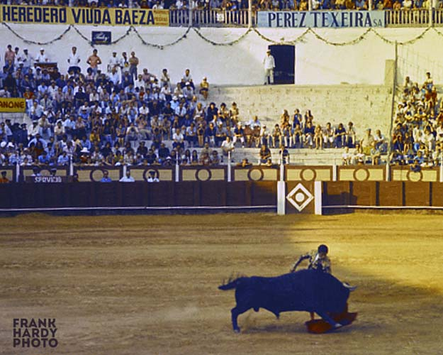Spanish Bull Fight_1983_RTP _ SFW