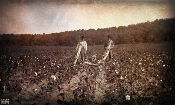 Cotton Pickers_15x9_25 May 16_SFW